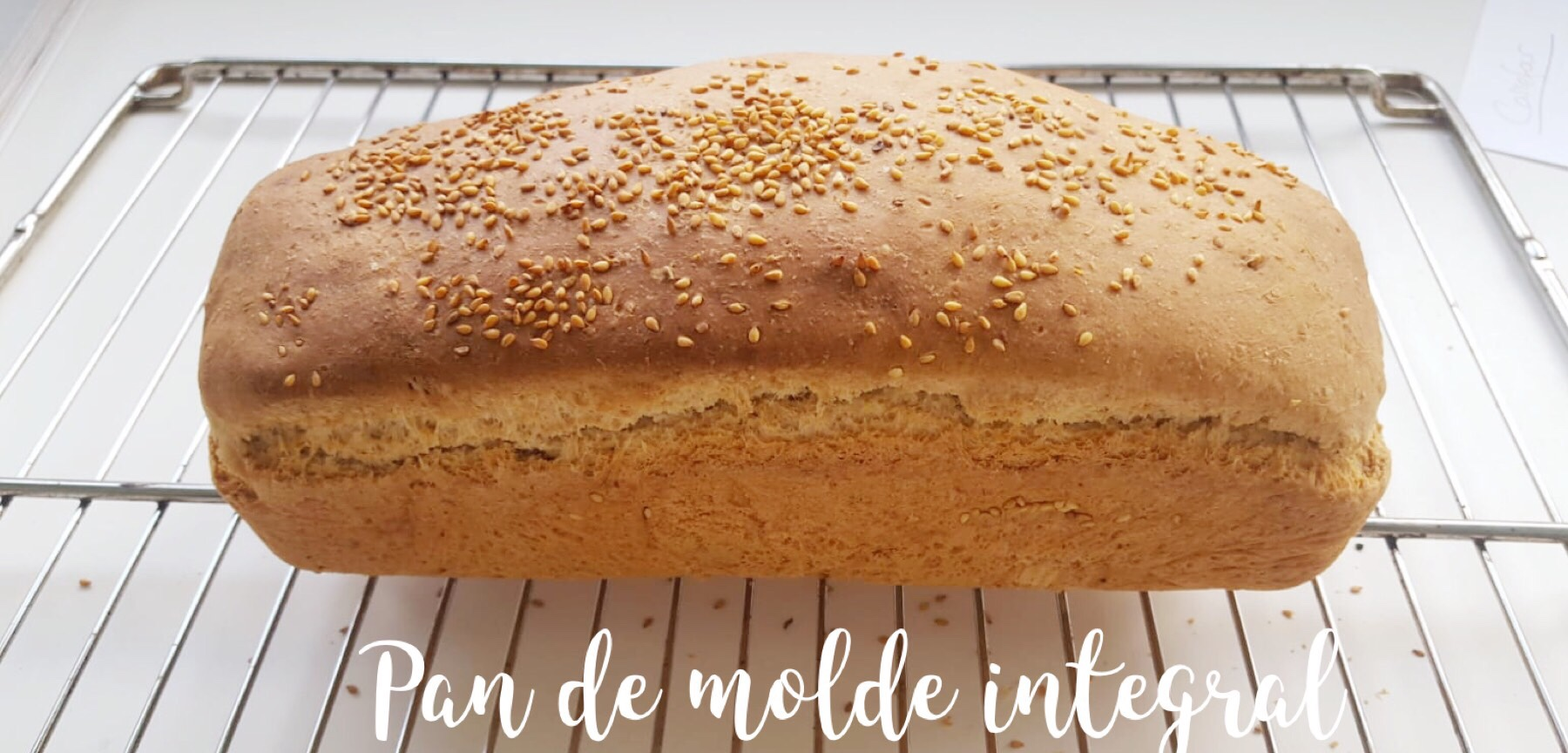 pan integral con nueces y muesli thermomix